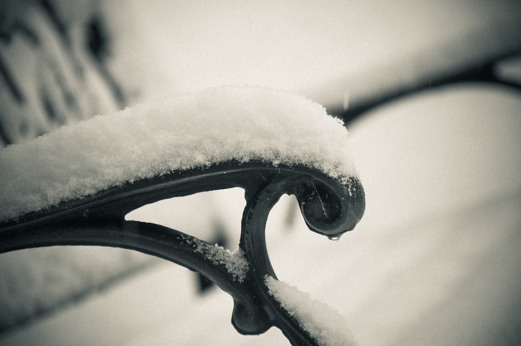 Snowy Details