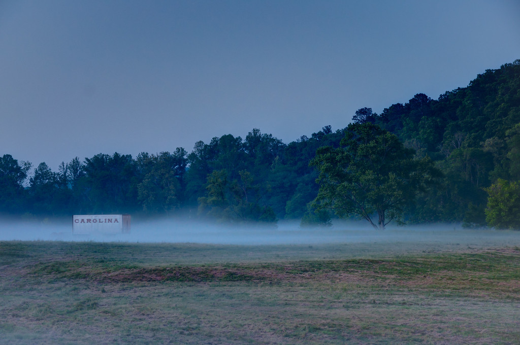 Carolina in the Fog