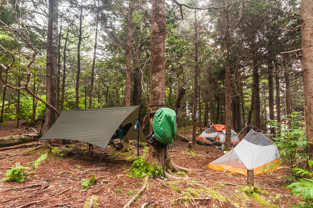 Camping on Mount Sterling